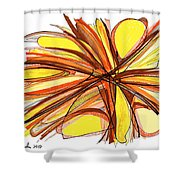 2010 Abstract Drawing Thirteen Shower Curtain