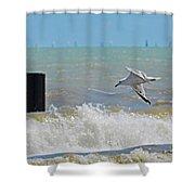 2012 08 11 Chicago Dsc_1571 Shower Curtain