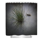 2015 Germano Reale Shower Curtain