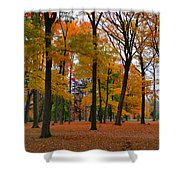 2015 Fall Colors - Washington Crossing State Park-1 Shower Curtain