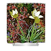 2016 Early May Side Garden Delight Shower Curtain