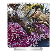 2016rose Parade Rp001 Shower Curtain