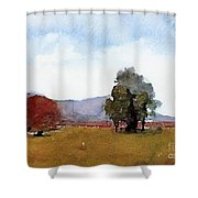 #20170221c Shower Curtain