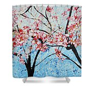 201726 Cherry Blossoms Shower Curtain
