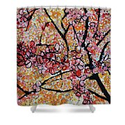 201727 Cherry Blossoms Shower Curtain