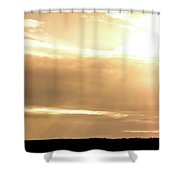 2018_02_pecos Tx_cactus 153 1  Shower Curtain