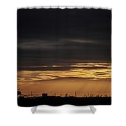 2018_02_pecos Tx_cactus 153 4 Shower Curtain