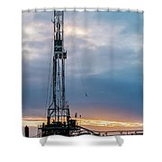 2018_02_pecos Tx_cactus 153 8 Shower Curtain