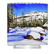 #202 Donner Summit Shower Curtain