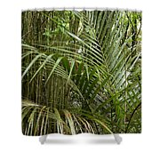 Jungle 97 Shower Curtain