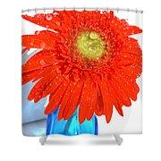 2044a Shower Curtain