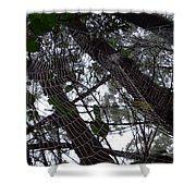 Australia - Spider Web High In The Tree Shower Curtain