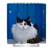 Cat On A Greek Island Shower Curtain