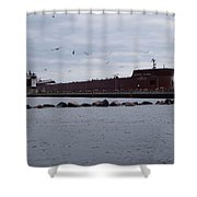 21 Gull Salute Shower Curtain