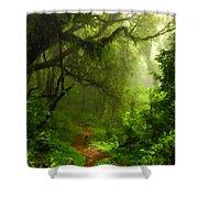 Landscape Work Shower Curtain