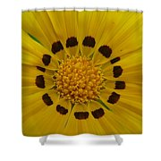 Australia - Yellow Daisy Flower Shower Curtain