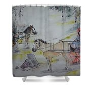 Here Come The Equines Album  Shower Curtain