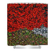 Flower Carpet. Shower Curtain