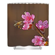 Honeybee Shower Curtain