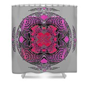 2450 Mandala 2017 Shower Curtain
