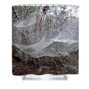 Australia - Concave Spider Web Shower Curtain