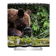 25 Shower Curtain
