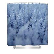 25398 General Shower Curtain
