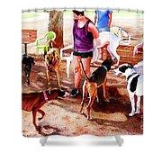 #258 Rruff Dog Park Shower Curtain