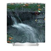 260 Olmsted Falls Shower Curtain