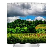2623- Comsrock Winery Shower Curtain
