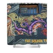 2635- Golden Triangle Shower Curtain