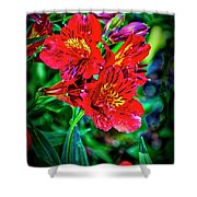2647- Red Flowers Shower Curtain