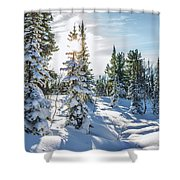 Amazing Landscape With Frozen Snow-covered Trees In Winter Morning  Shower Curtain