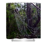 Australia - Uniquely Yours Spider Web Shower Curtain