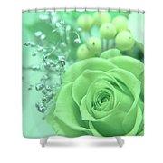 A Gift Of Preservrd Flower And Clay Flower Arrangement, White An Shower Curtain