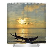 Alas De Amanecer Shower Curtain