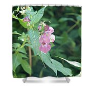 Alpine Wildflower Shower Curtain