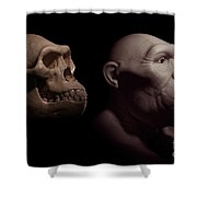Australopithecus With Skull Shower Curtain