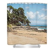 Beach In New Zealand Shower Curtain