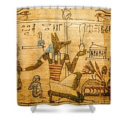 Book Of The Dead Shower Curtain