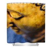 Buddha Sculpture Shower Curtain