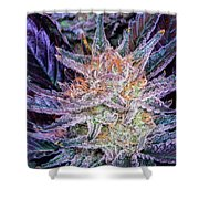Cannabis Macro Shower Curtain