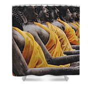 Carved Stone Buddha Statue Wat Temple Complex In Old Siam Kingdom Ayutthaya Thailand Shower Curtain