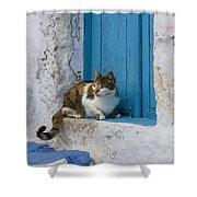 Cat In A Doorway, Greece Shower Curtain