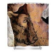 Cave Art: Horse Shower Curtain