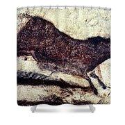 Cave Art: Lascaux Shower Curtain