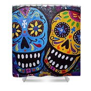 Couple Day Of The Dead Shower Curtain