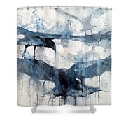 3 Crows Shower Curtain