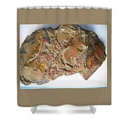 3-d Abstract  Shower Curtain