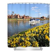 Daffodils Beside The Thames At Hampton Court London Uk Shower Curtain